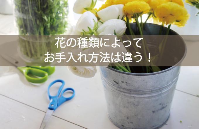 お手入れポイント!花の種類によって水揚げ方法を変える