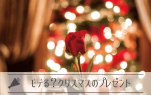 クリスマスにプリザーブドフラワーをプレゼントする男性はモテる?