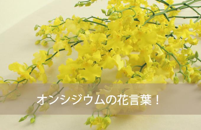オンシジウムの花言葉