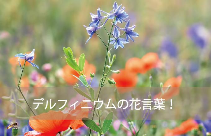 デルフィニウムの花言葉