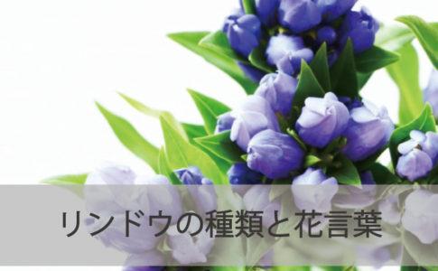 リンドウの種類と花言葉
