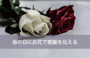母の日にお花で感謝を伝える