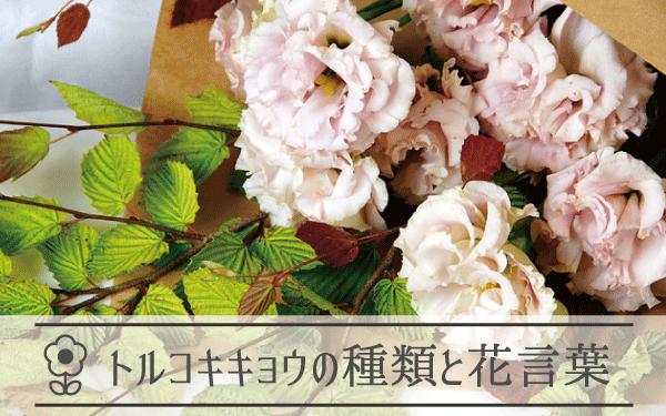トルコキキョウの種類と花言葉