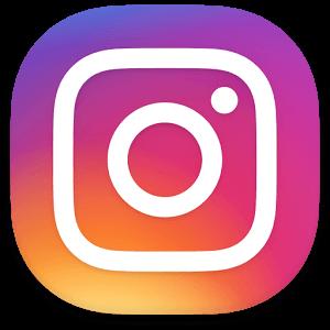 Instagram|月に2回のお花の定期便|クヴェルフラワー