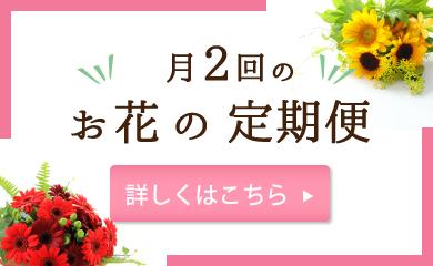 月に2回のお花の定期便