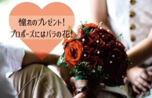 憧れのプレゼント!プロポーズにはバラの花を!