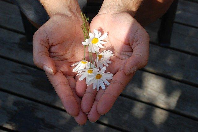 お花を渡す画像