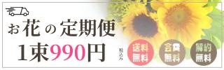 月に2回のお花の定期便【月1980円】|クヴェルフラワー