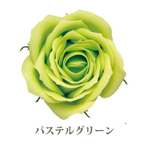 ソープフラワー花材【フレグランスソープ ローズL】バラ(大輪)5輪入り/全13色※パステルグリーン